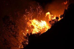 the_burning_bush_by_chickensandducks-d55ozov