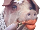 Lipstick-on-a-pig_2